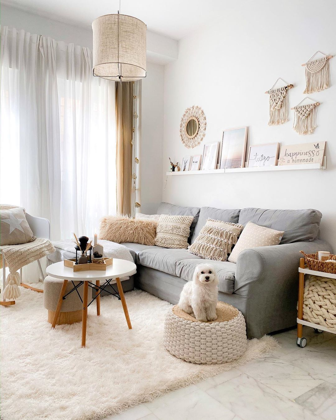 Bright Cozy Living Room Idea With Pets In 2020 Comfy Living