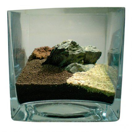 How To Aquascape Small Tanks | Features | Practical Fishkeeping