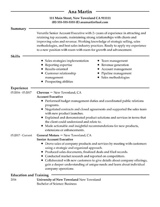 ACCOUNT EXECUTIVE Resume summary examples, Resume