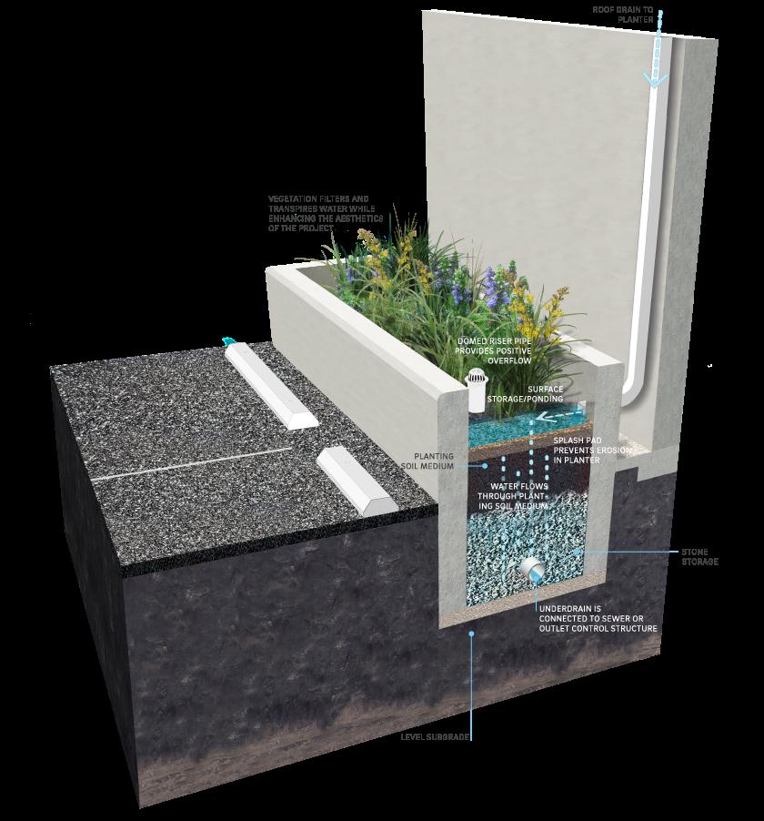 Build A Concrete Catch Basin