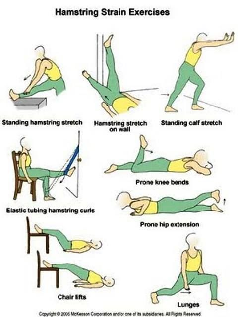Hamstring Stretch Physical Therapy Exercises Hamstring Workout Knee Exercises