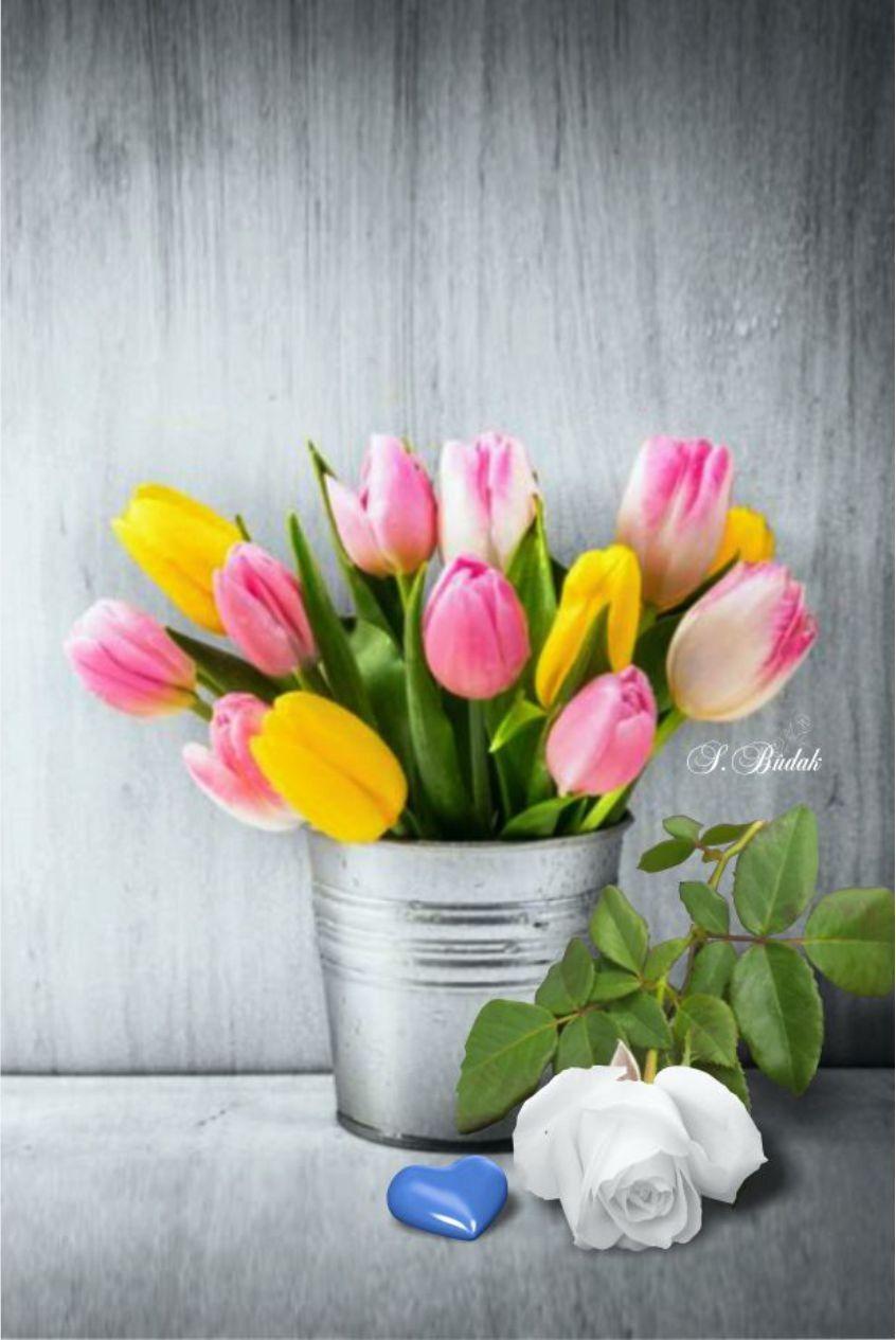 Banner Ad Library Valentine S Day Safnow Org Valentines Flower Shop Banner Ads