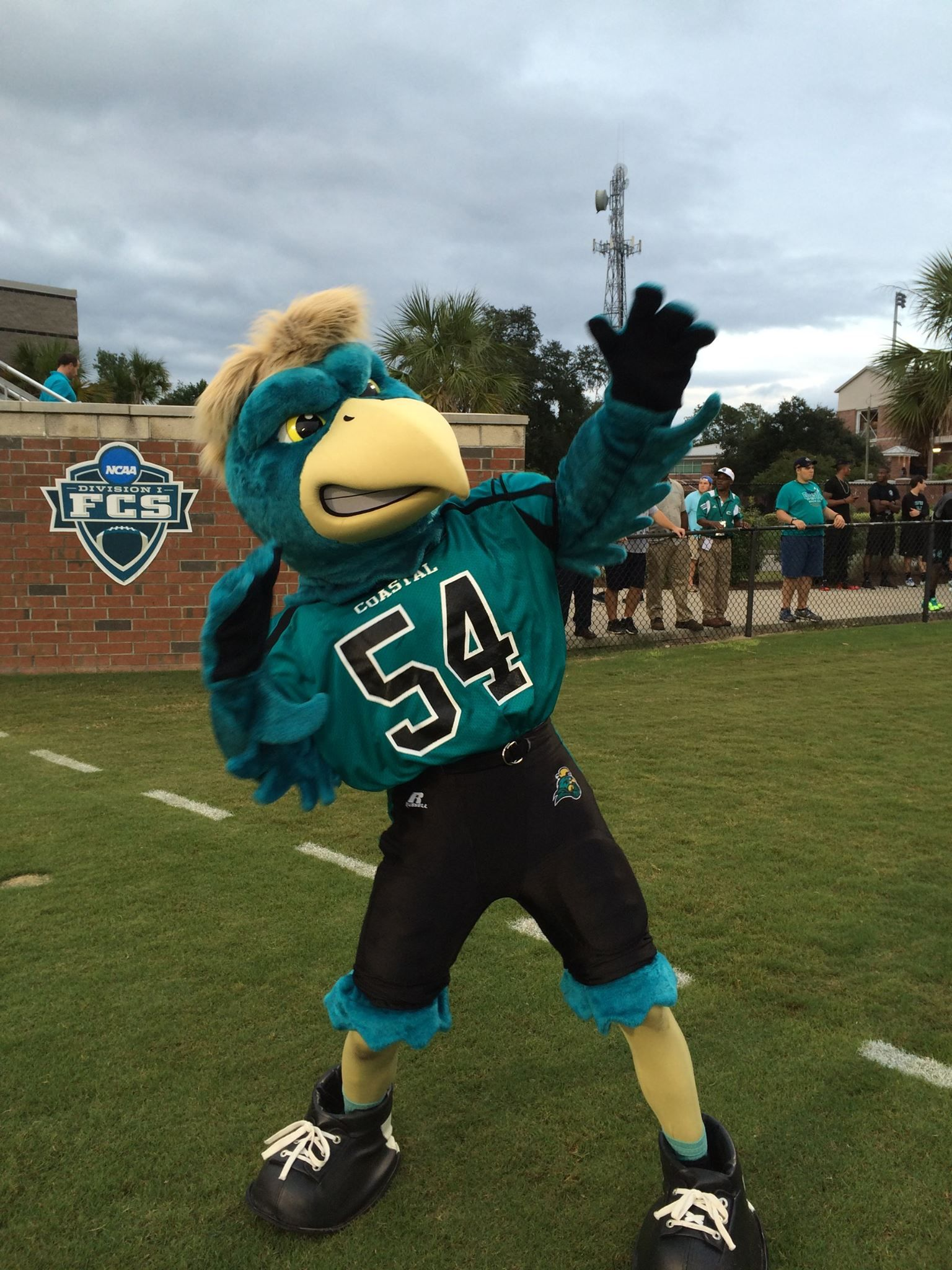 Chauncey living it up at the Coastal Carolina University