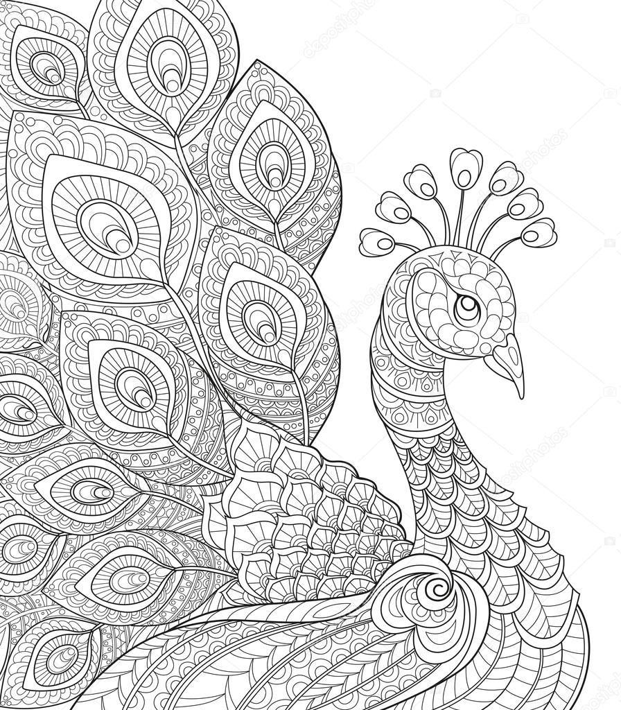 Royalty Free Tavus Kuşu Yetişkin Antistress Boyama Sayfası Siyah