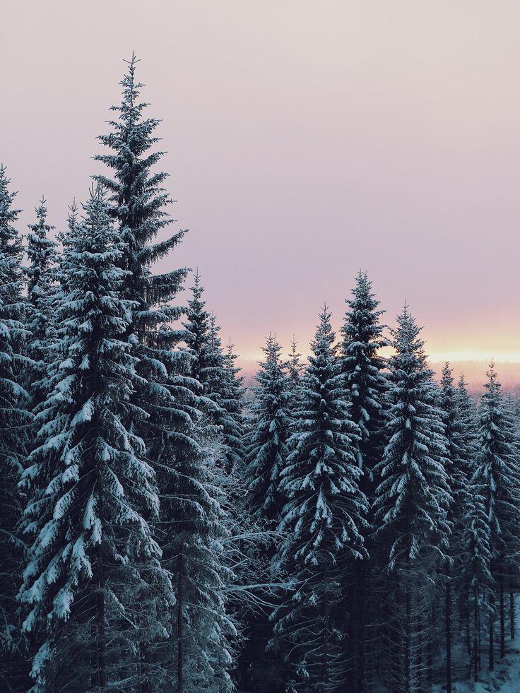 Photo of WinterJanuary 6, 2016, 2:53 PM | sannalinn | VSCO
