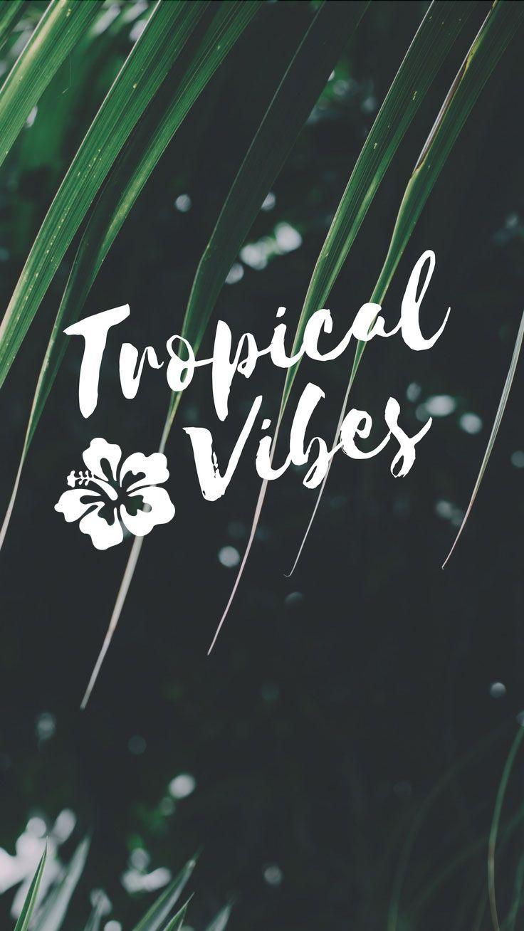 Tropical Vibes Only Slandlife Tropicalvibes Iphone 7 Plus Wallpaper Preppy Wallpaper Iphone Wallpaper Tropical