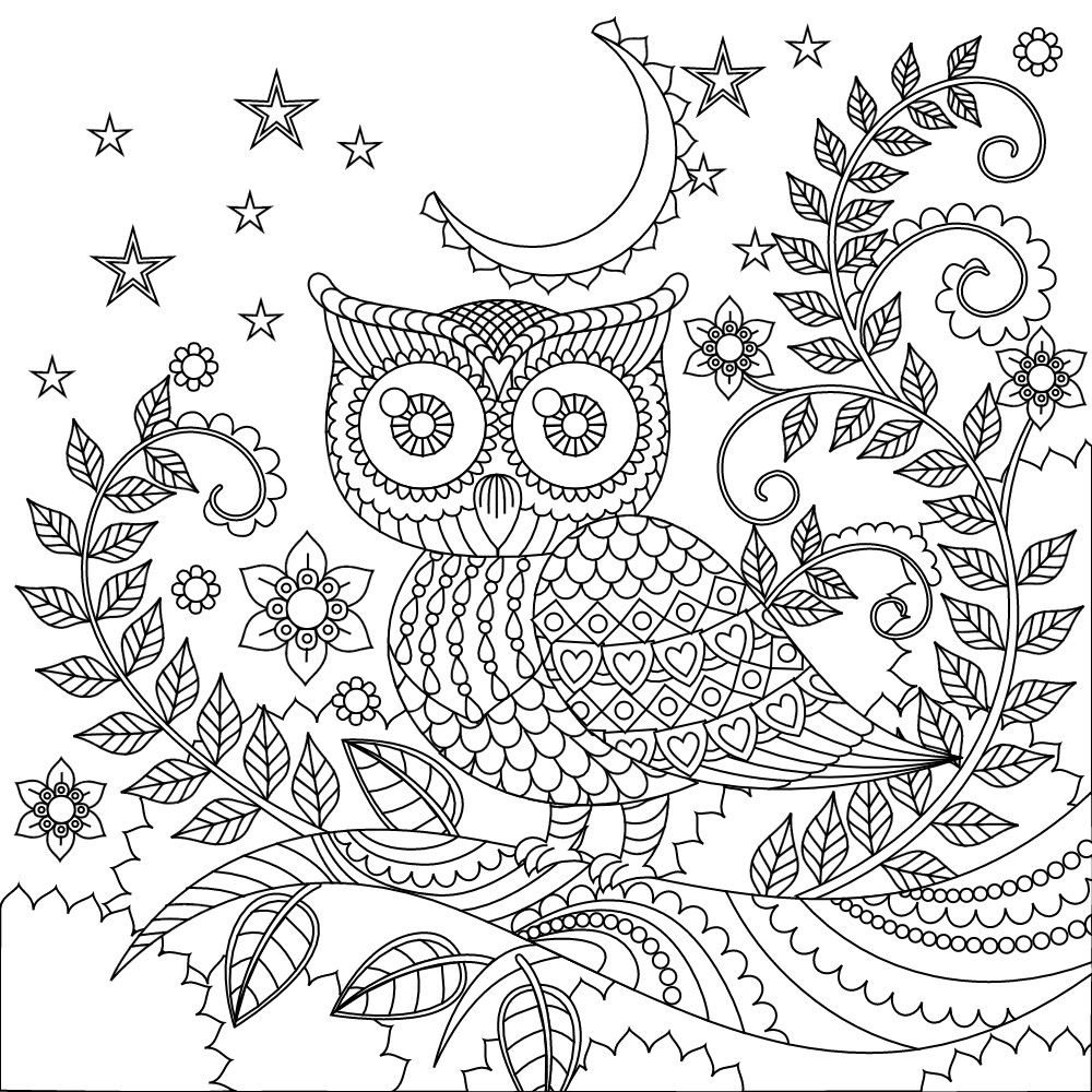 Owl coloring page   Owl coloring pages, Coloring books ...