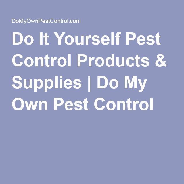 Do it yourself pest control products supplies do my own pest do it yourself pest control products supplies do my own pest control solutioingenieria Choice Image