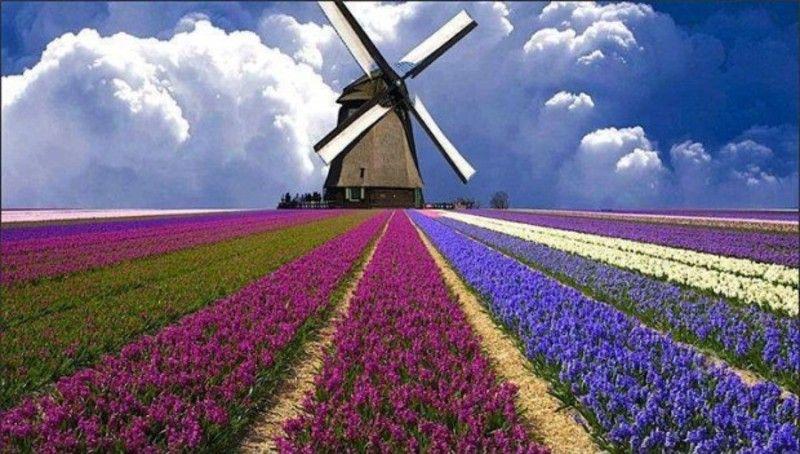 صور أجمل 10 أماكن طبيعية مذهلة غير معروفة حول العالم موقع رائج Beautiful Places Windmill Places Around The World