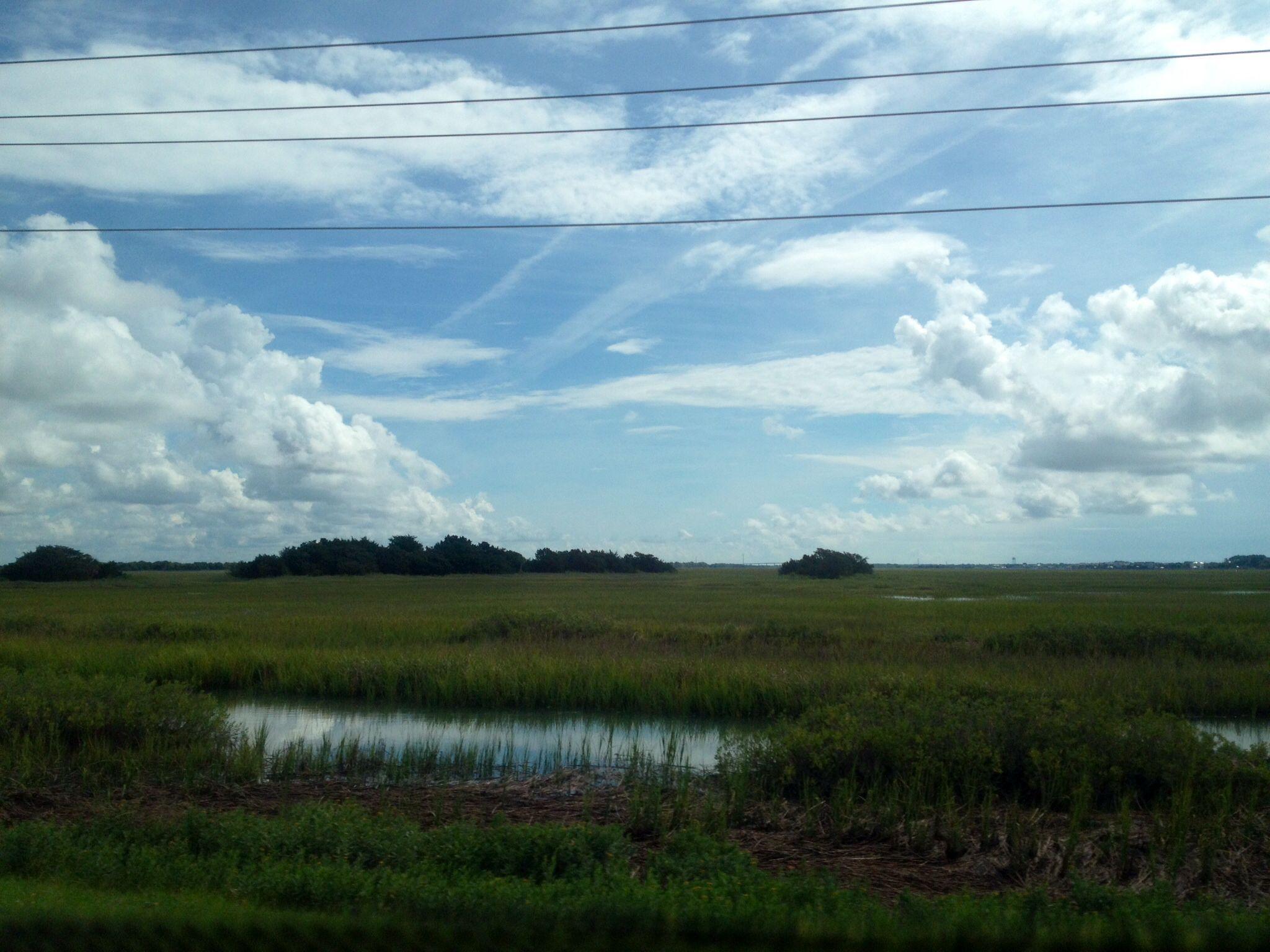 Roadside in Sullivan's Island / July 13th 2014