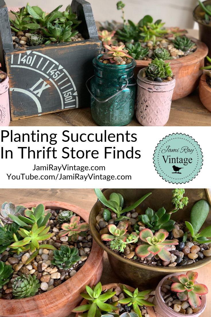 Planting Succulents In Thrift Store Finds #thriftstorefinds