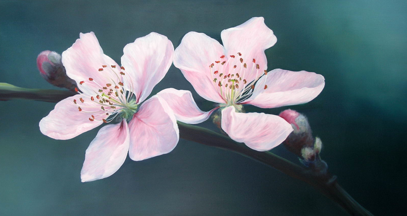 Cherry Blossom Oil Painting By Ele Art On Deviantart Cherry Blossom Painting Cherries Painting Blossoms Art