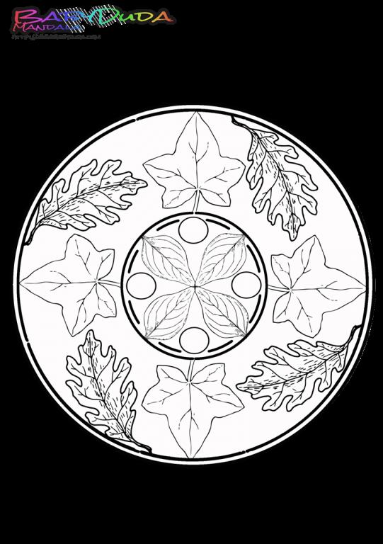 Herbst Mandala - Ausmalbilder und Malvorlagen ? BabyDuda