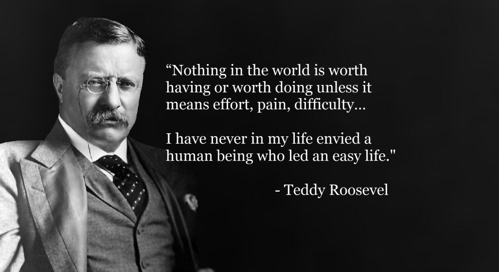 Teddy Roosevelt Quotes Prepossessing Roosevelt Quotes  Top 12 Theodore Roosevelt Quotes The Man In The
