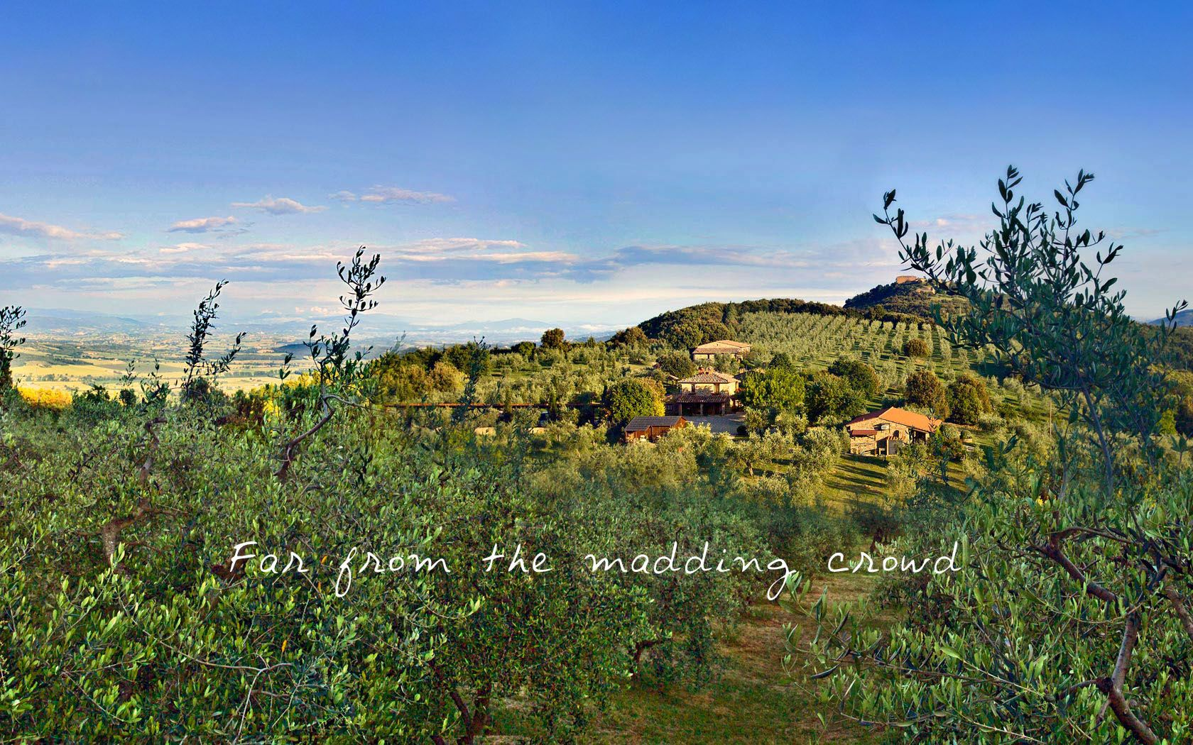 Vegan B & B in Italy :The Country House Montali