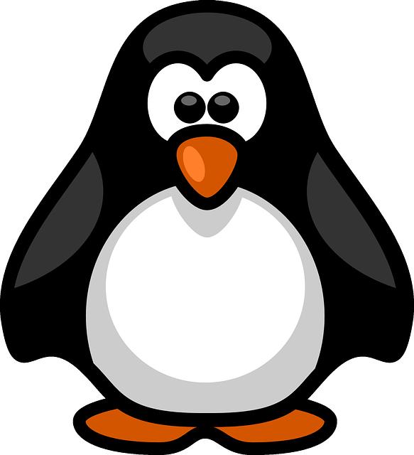 Free Image on Pixabay - Penguin, Aquatic, Flightless, Birds