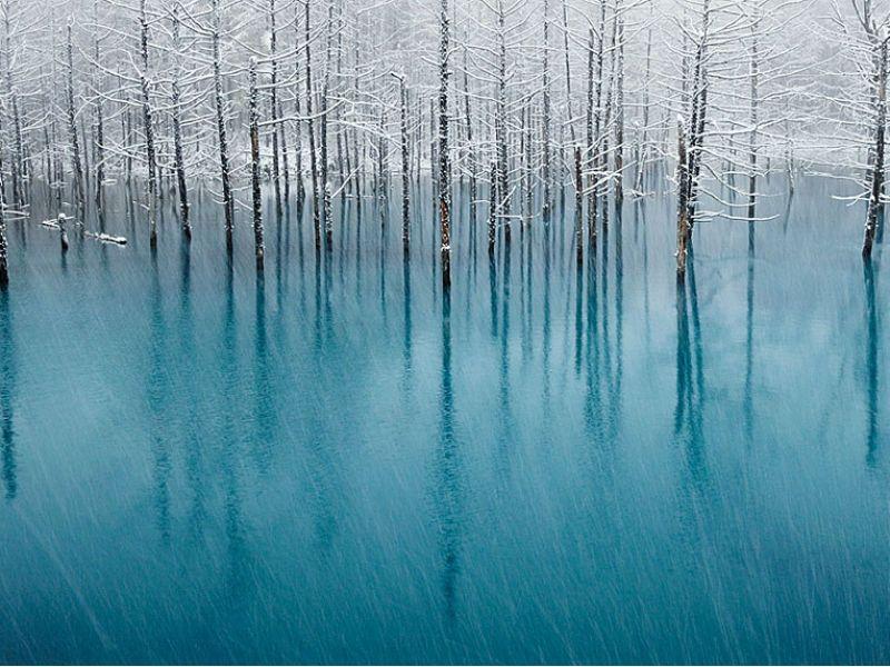 O site Bored Panda selecionou 15 imagens, capturadas por fotógrafos pelo mundo, com lagos e oceanos congelados que se assemelham a obras de arte.