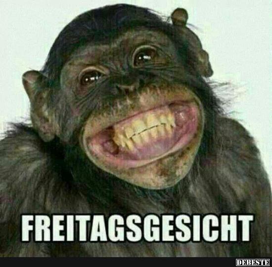 Gridsa Freitag Spruche Lustig Freitag Lustig Witzige Bilder