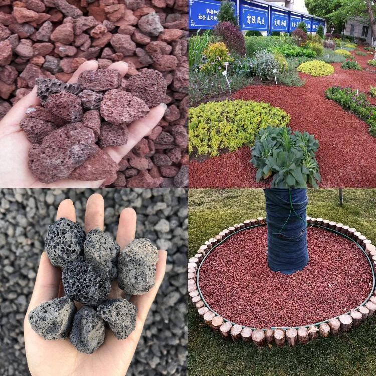 43++ Where to buy pumice for gardening near me ideas in 2021