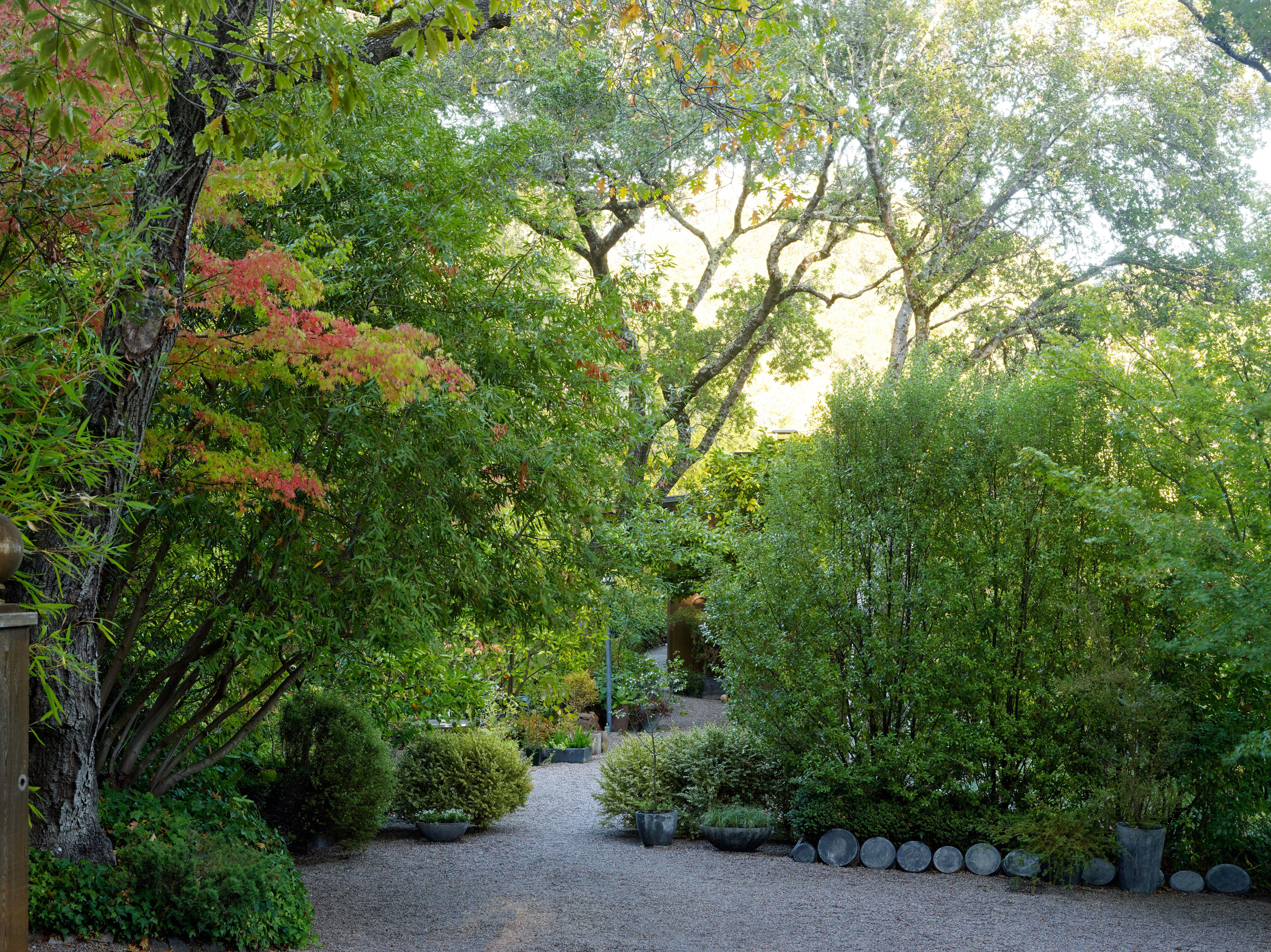 Blasen Landscape Architecture Unearths The Gardens Of Tomorrow Photos -