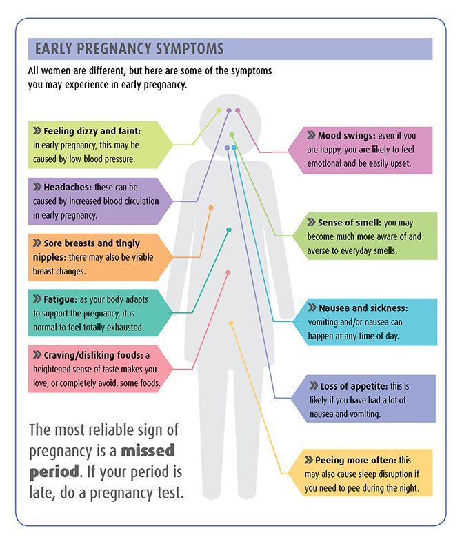 Early Pregnancy Symptoms Infographic Taken From The Encyclopedia