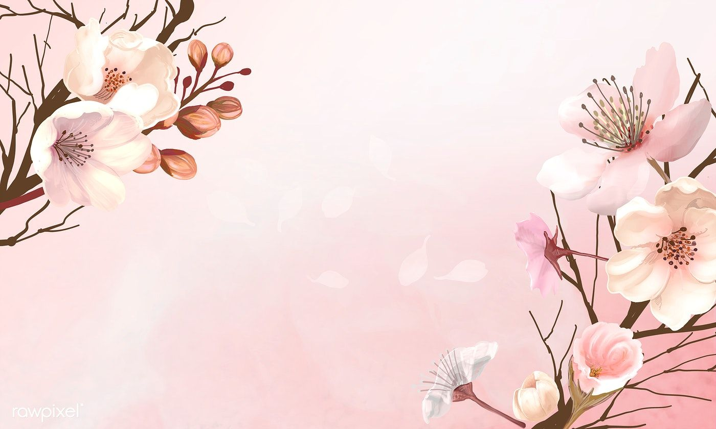 Download Premium Illustration Of Hand Drawn Cherry Blossoms On A Pink Flower Background Wallpaper Cherry Blossom Background Flower Backgrounds