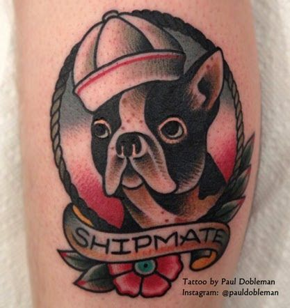 Shipmate Boston Terrier Dog American Traditional Tattoo ...