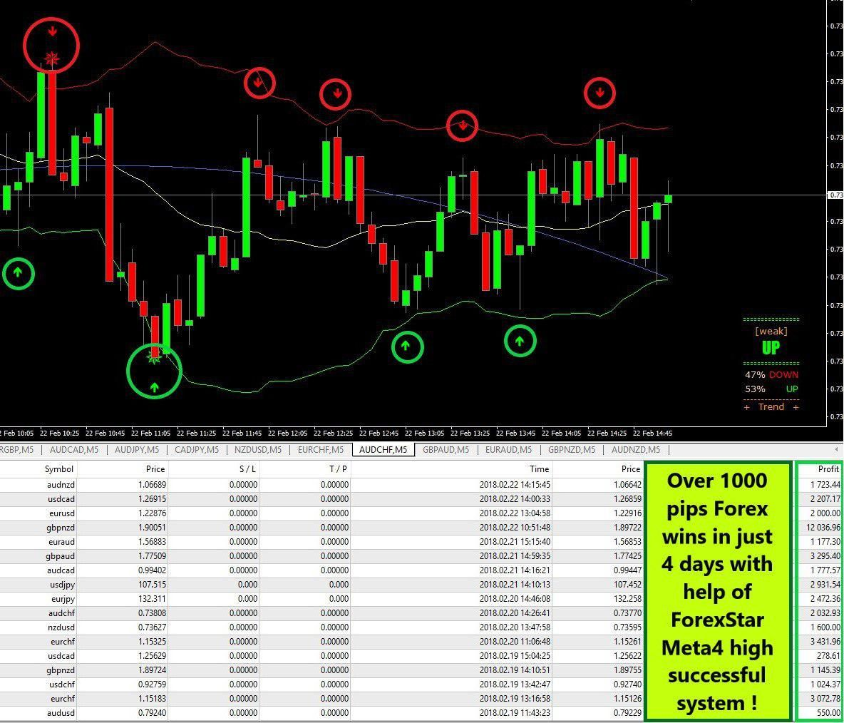 Forex And Binary Telegram Free Signal Groups Forex Trading