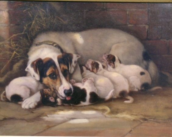Maternity By Valentine Thomasgarland Dog Drawing Dog Portraits Dog Paintings