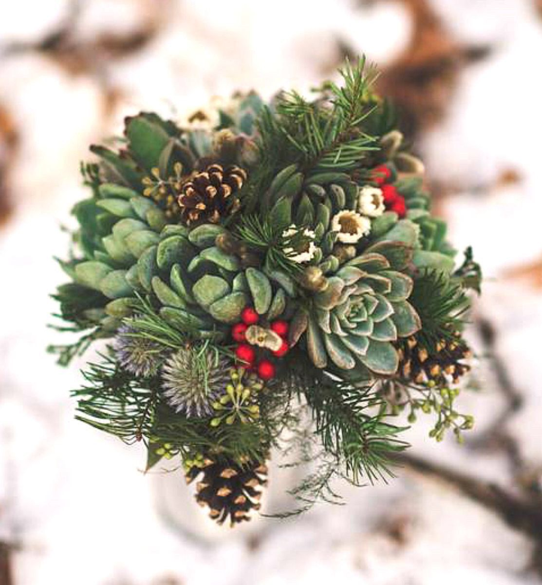 Winter Bridal Bouquet; Succulents, Evergreen And Red Holly