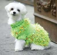 Crochet Jacket Free Dog Sweaters 28+ Ideas #dogcrochetedsweaters