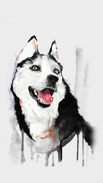 塗料で描いた犬の動物イラスト Design Graghic Web ハスキー 壁紙 犬