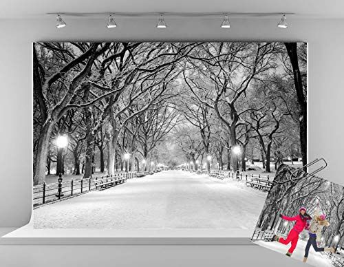 CdHBH Snow Backdrop Silver Covered White Snow Winter Photography Backdrop Art Studio Photography Background Props Studio Display Mural 5x7ft LYLX631