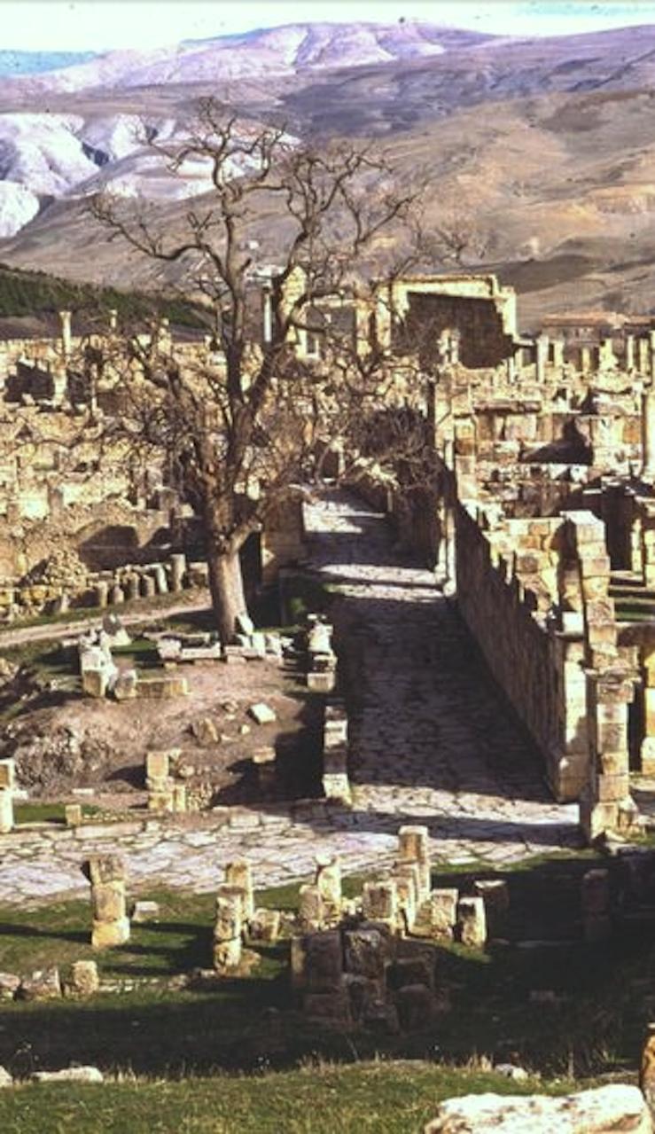 mountain village of Djemila. Algeria