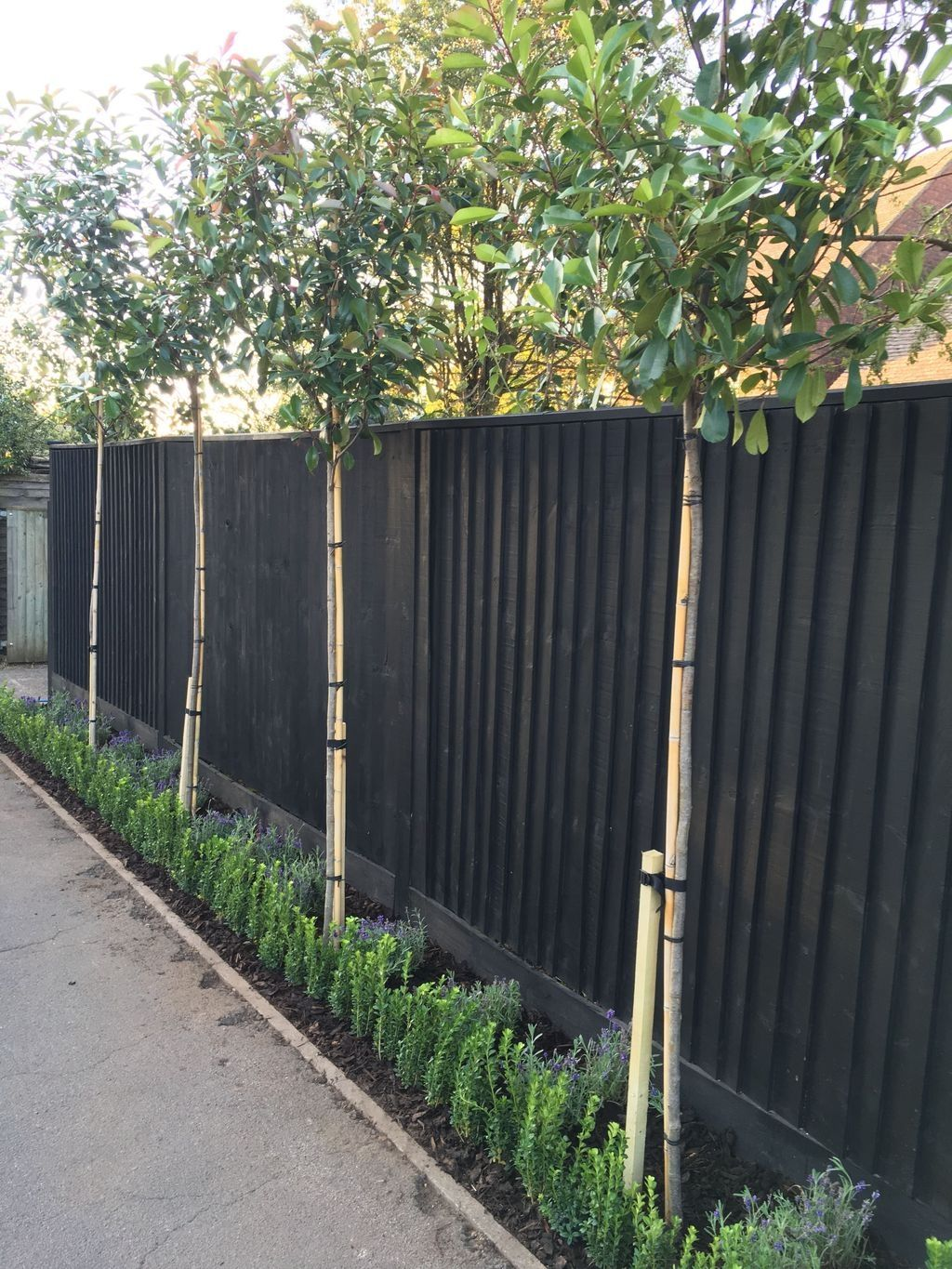 20 Inexpensive Black Fence Ideas For Garden Design Privacy