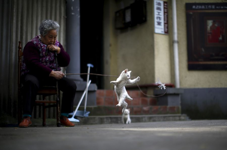 A woman plays with a kitten inside a line house in downtown Shanghai on April 12, 2015. Carlos Barria / Reuters (Hopeful Images From 2015 - The Atlantic)
