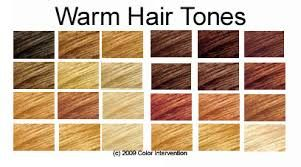Warm Hair Tones Tone Hair Cool Tone Hair Colors Hair Color Chart