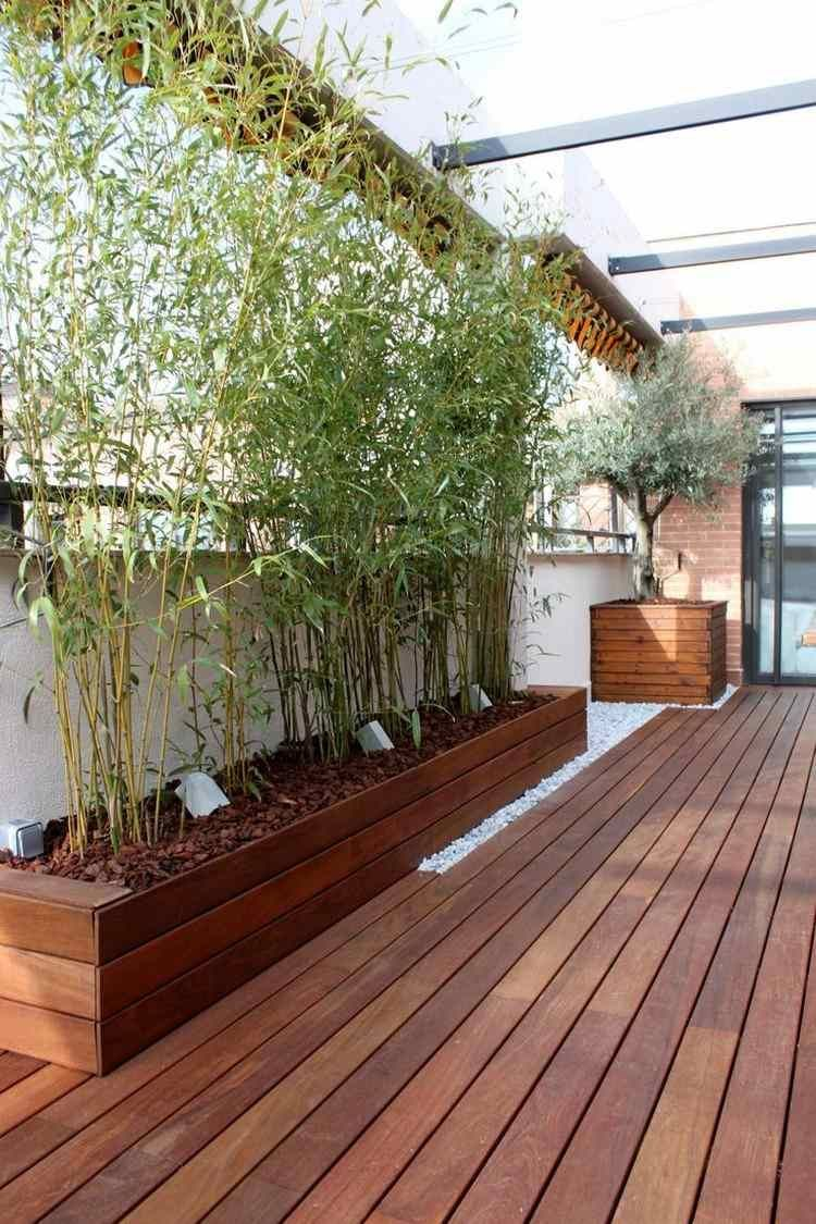 hochbeet fr bambuspflanzen mit mulch und bodenleuchten - Moderne Garten Mit Bambus