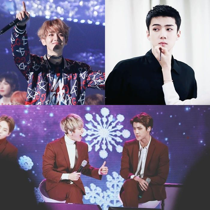 Kpop Idol Visual Visual Members Warm Cold Visual Members Kpop Warm Cold Exo Sehun Baekhyun Kpop Idol Kpop Idol