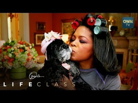 What Oprah Learned from Her Dog Sophie   Oprah's Lifeclass   Oprah Winfr...
