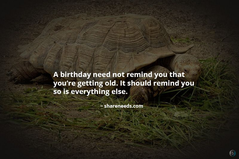A birthday need not remind you that you're getting old. It should remind you so is everything else.