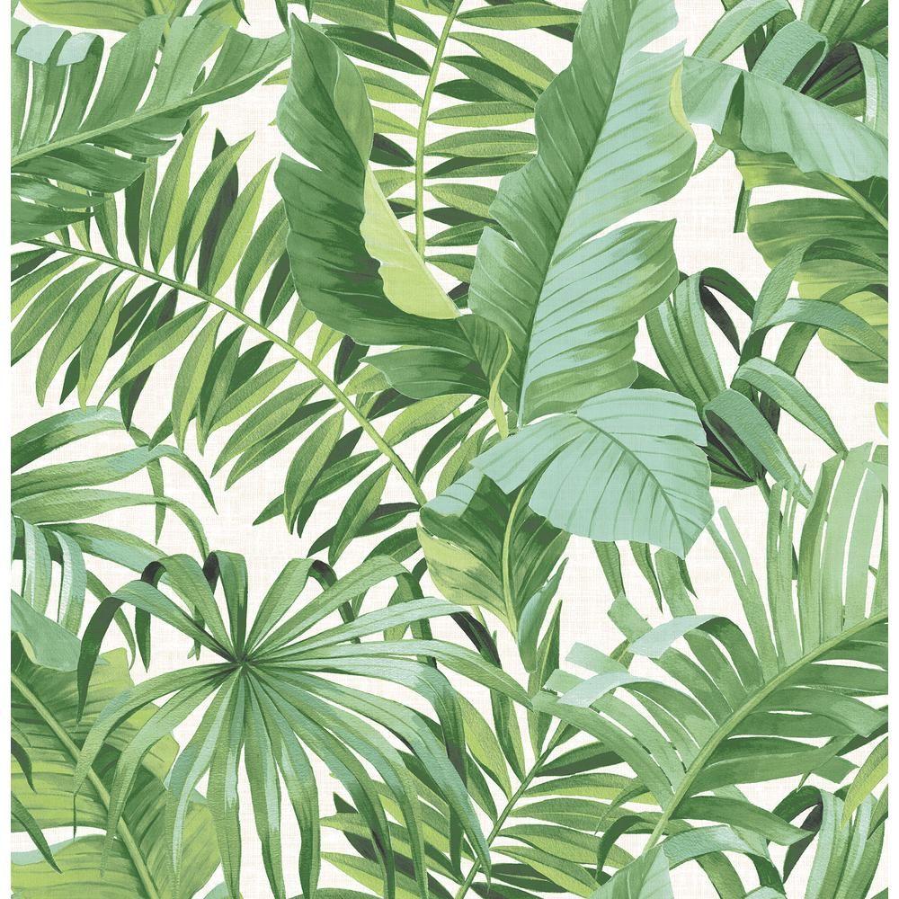 AStreet 56.4 sq. ft. Alfresco Green Palm Leaf Wallpaper
