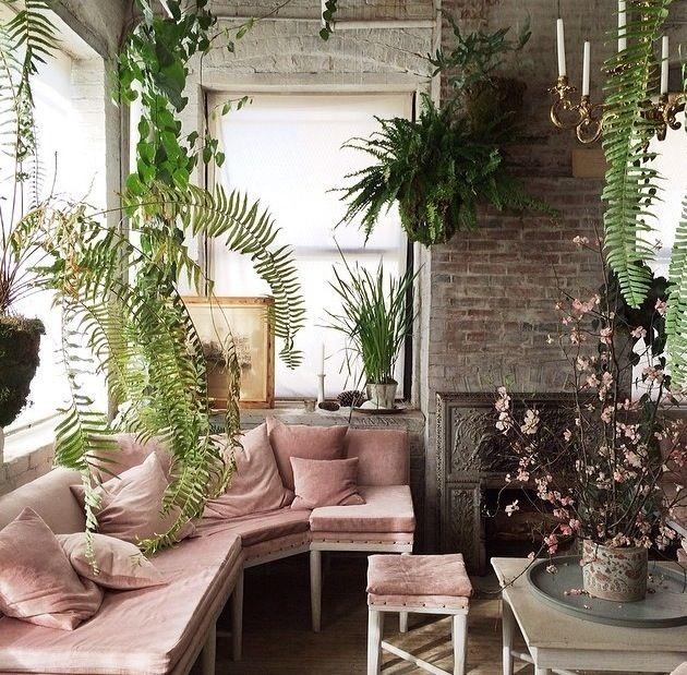 Botanicals And Blush