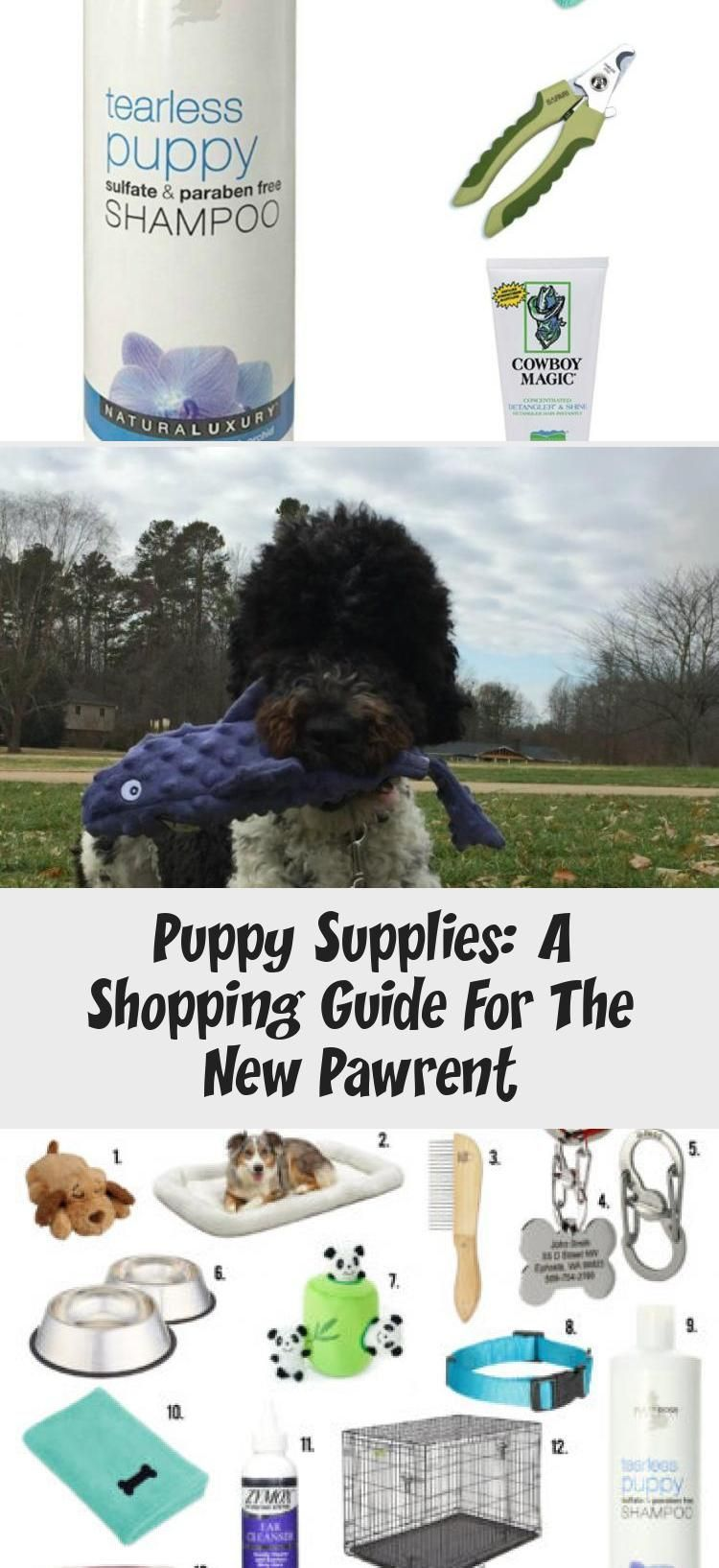 puppy supplies: a shopping guide for new pawrents - www.saunderssays.com #Animal... #Animal #guide #pawrents #puppy #shopping #Supplies #wwwsaunderssayscom