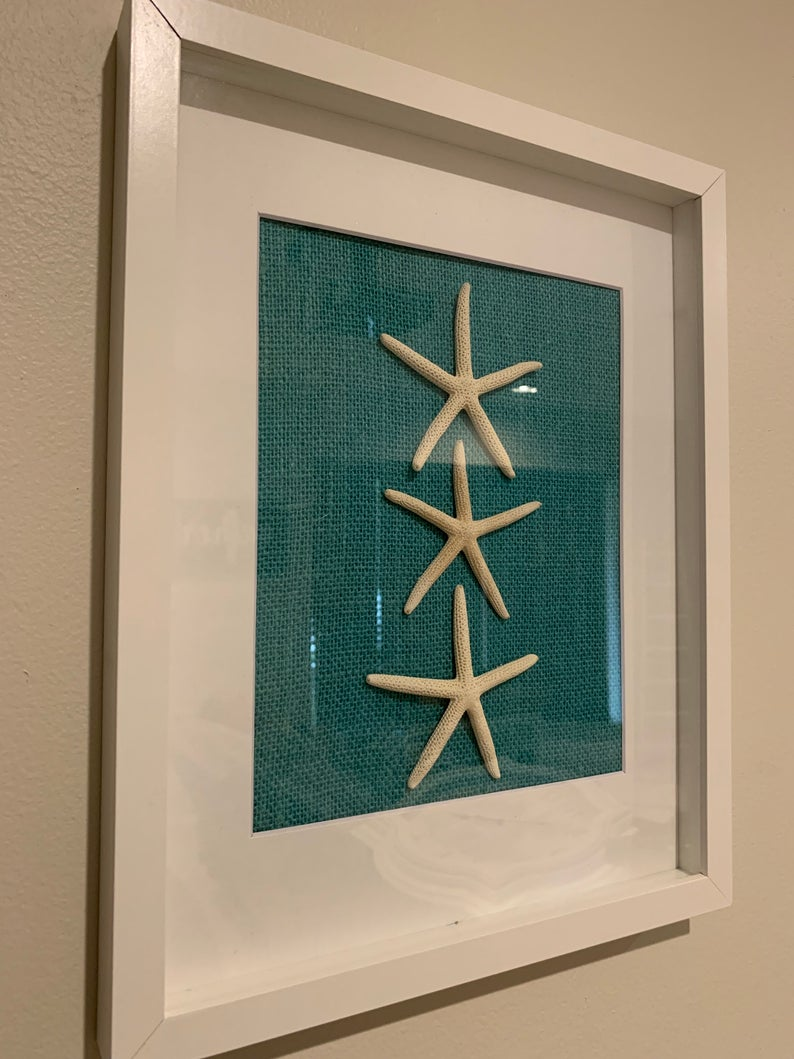 Starfish And Sand Dollar 11x14 Shadowbox Frame Set Etsy In 2020 Starfish Wall Art Sand Dollar Art White Shadow Box