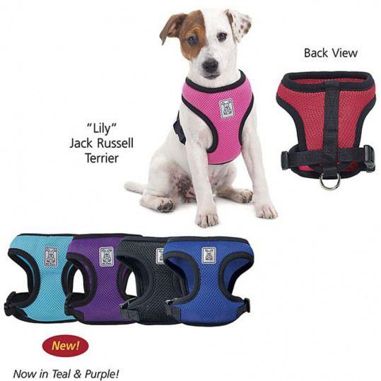 Soft Walking Harness Dog Beds Dog Harnesses Collars Dog