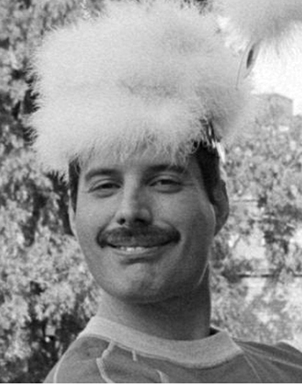 Freddie Mercury Laughing : freddie, mercury, laughing, Hiatus., Queen, Freddie, Mercury,, Photos