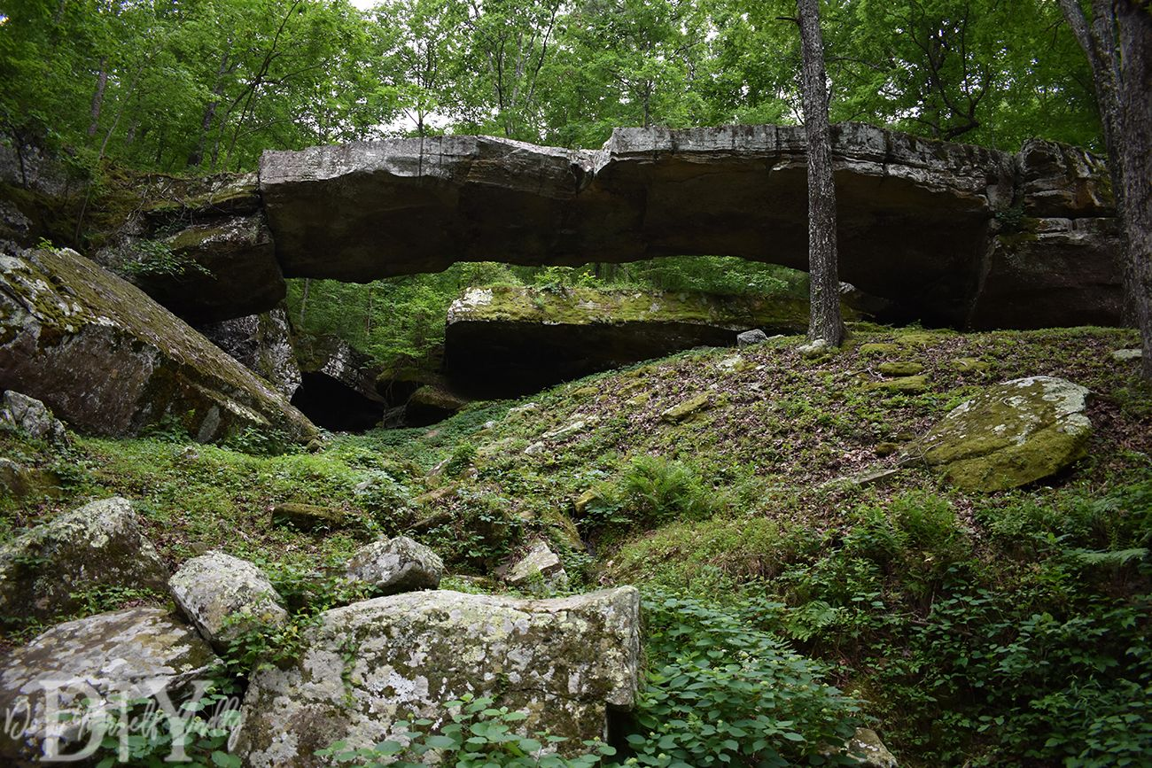 Travel To And Enjoy The Beauty Of Nature At The Natural Bridge Of Arkansas Natural Bridge Nature Garden Bridge