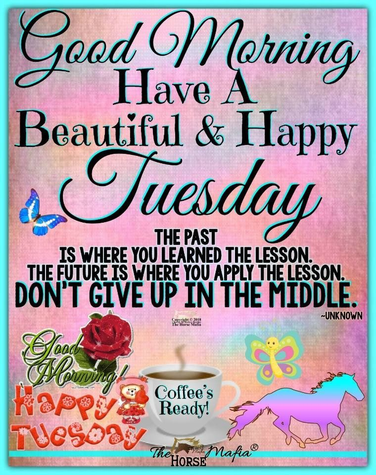 Tuesday Morning Motivational Quotes Images 1