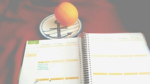 Sick= planner lacking. Hoping some Vitamin C helps me out! #planner #erincondrenplanner